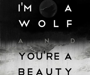 exo, wolf, and beauty image