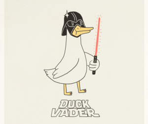 duck and funny image
