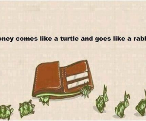 money, rabbit, and turtle image