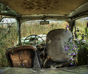 nature, car, and flowers image