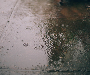 rain, indie, and photography image