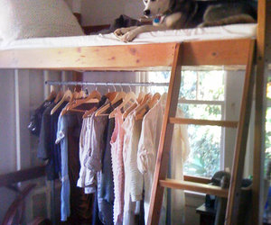 bedroom, clothing, and dog image