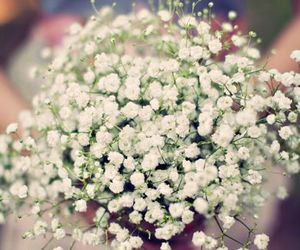 beautiful, wedding, and floral image