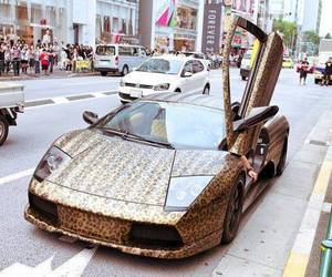 car, leopard, and Lamborghini image
