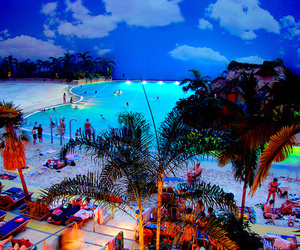 beach, summer, and party image
