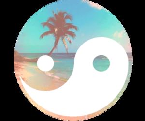 beach, summer, and ying yang image
