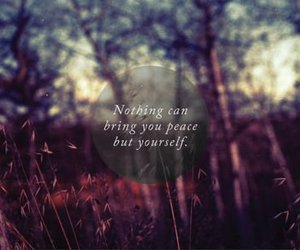 peace, quote, and text image