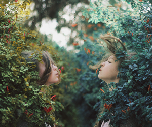 analog, fairy, and trees image