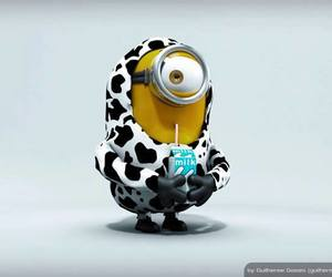 day, minions, and love image