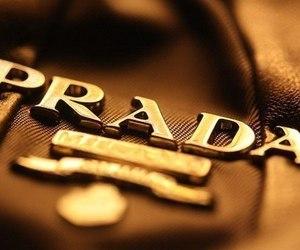 Prada, luxury, and bag image