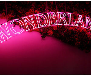 wonderland, pink, and neon image