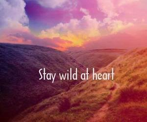 quote, wild, and heart image