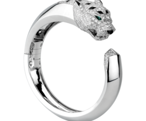 cartier, fierce, and silver image