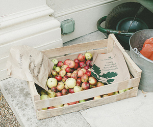 vintage, apple, and garden image