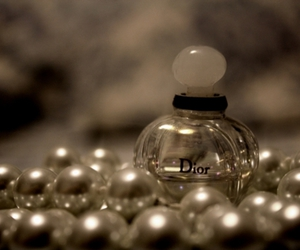 classy, dior, and perfume image