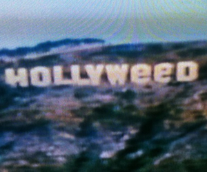 weed, hollywood, and grunge image