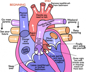 cycle, relationships, and heart image