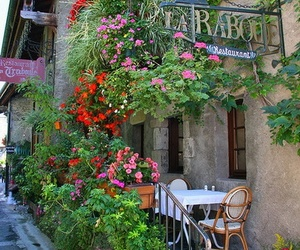 flowers, restaurant, and france image