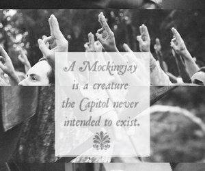 the hunger games, tributes, and stay alive image