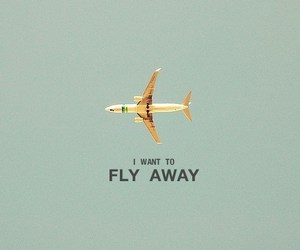 away, fly, and want image
