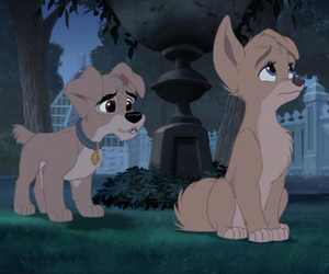 angel, lady and the tramp, and lady and the tramp 2 image