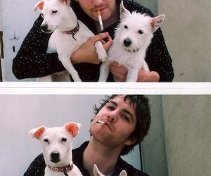 dog and jim sturgess image