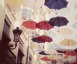 umbrella and rain image