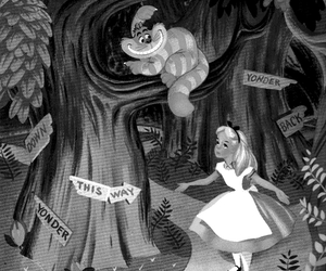 alice, dress, and signs image