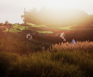 music, nature, and psytrance image