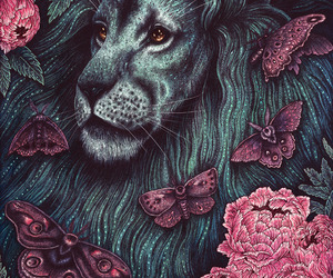 art, butterfly, and lion image