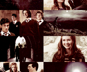 harry potter, maraudeurs, and lily image