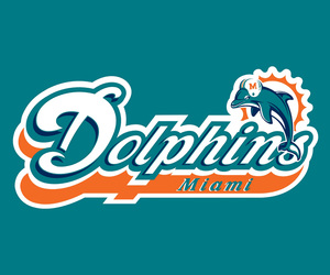 miami dolphins and hd wallpaper image