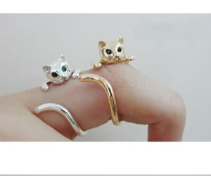 cat, ring, and gold image