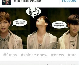 funny, Jonghyun, and Onew image