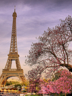 Download Love In Paris Wallpapers To Your Cell Phone