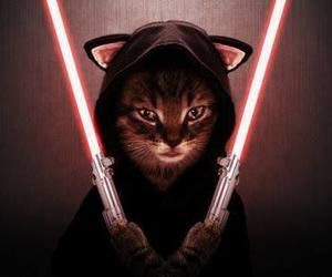 chat, humour, and star wars image