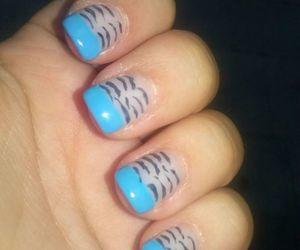 blue, nail, and zebra image