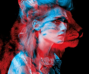 red, blue, and cat image