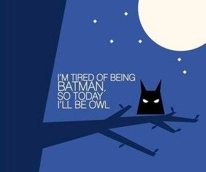 batman, owl, and funny image
