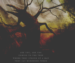 the hunger games, mockingjay, and hanging tree image