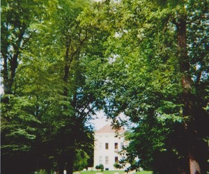 green, lovely, and palace image