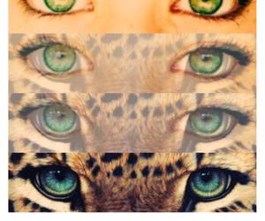 amazing, eyes, and lovely image