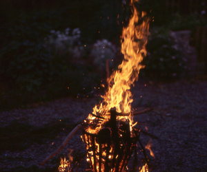 beauty, fire, and life image