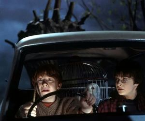 car, hedwig, and harry potter image