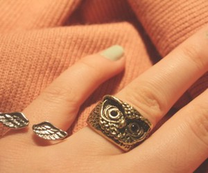 everyone, owl, and ring image