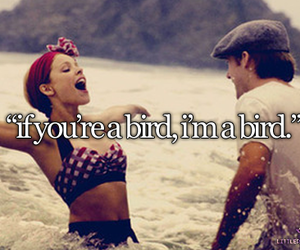 bird, love, and the notebook image