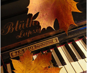 piano, autumn, and music image