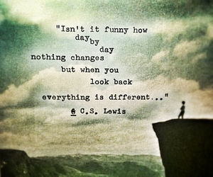 beautiful, quote, and c. s. lewis image