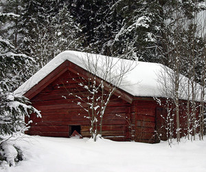 cabin, cold, and forest image