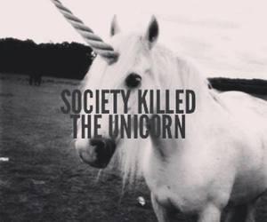 unicorn, society, and black and white image